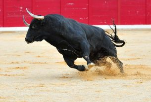 Bitcoin Bulls Unleashed as Crypto Begins Trading on Good News