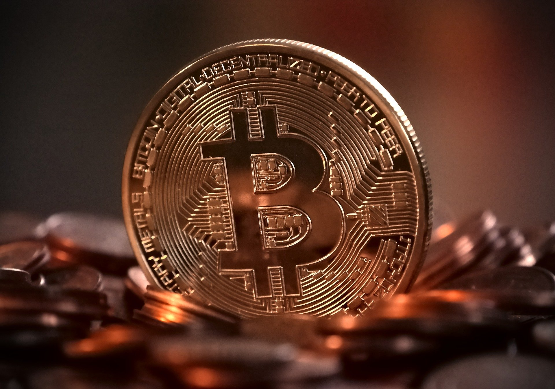 Bitcoin is Holding Above a Key Support Level as Bulls Guard from Further Losses