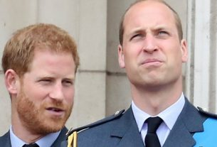Would William & Harry Be Feuding If Princess Diana Were Still Alive?