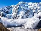 Here's Why Ethereum Rival Avalanche May Be a Bull in Making