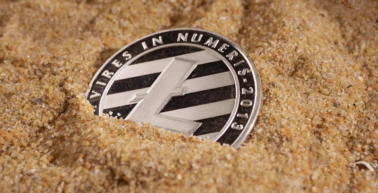 Litecoin Whales Have Increased Their Holdings by 270k LTC in July